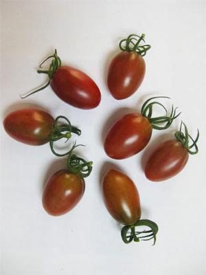 紫樱桃番茄种子,紫千禧番茄种子