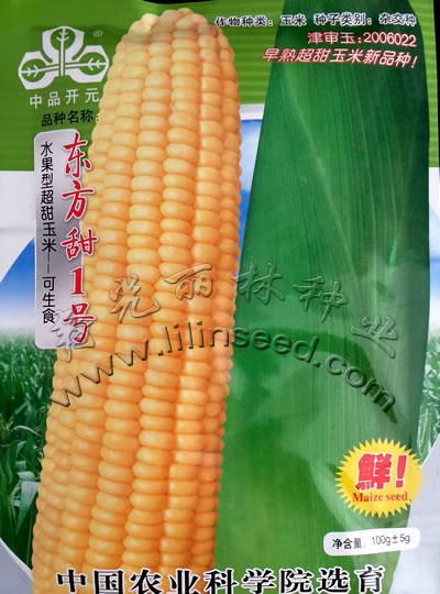 极早熟超甜玉米新品种―东方甜1号